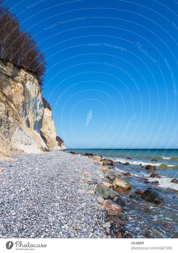 Chalk cliffs on the coast of the Baltic Sea on the island of Rügen Limestone rock Baltic coast Ocean trees steep coast foundling Stone Rock Sky clear Blue