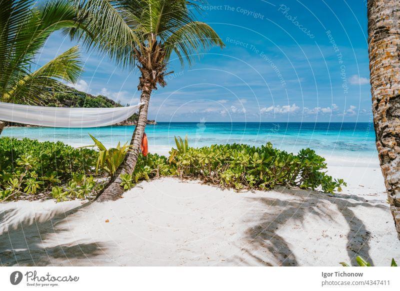Tropical beach at Mahe island, Seychelles. Travel vacation background seychelles mahe paradise water nature ocean landscape tropical summer palm sky sand sunny