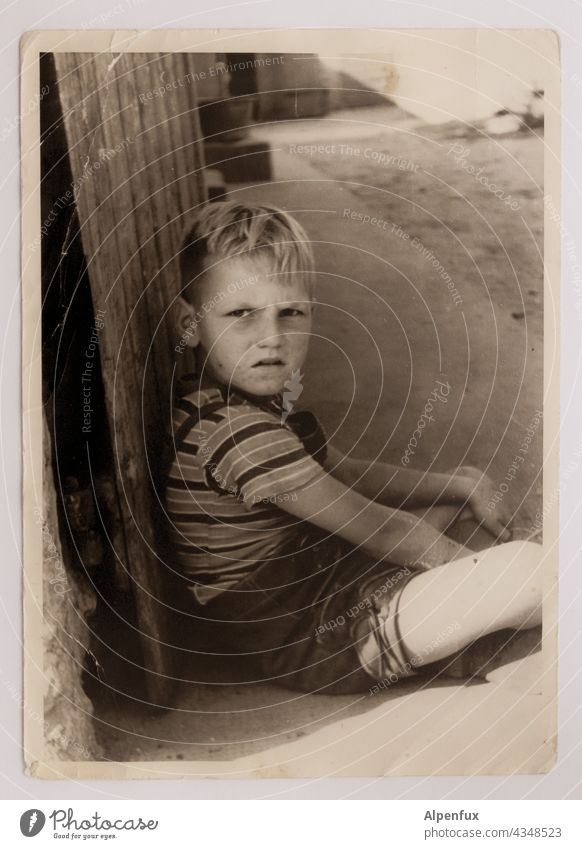 ! Boy (child) Child Infancy Human being 3 - 8 years Exterior shot Looking Looking into the camera portrait Masculine bub Seriousness serious look Face Blonde