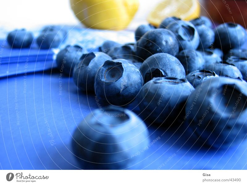 blueberry group Lemon Still Life Napkin Gastronomy Healthy Blueberries (German?) Fruit Tablecloth