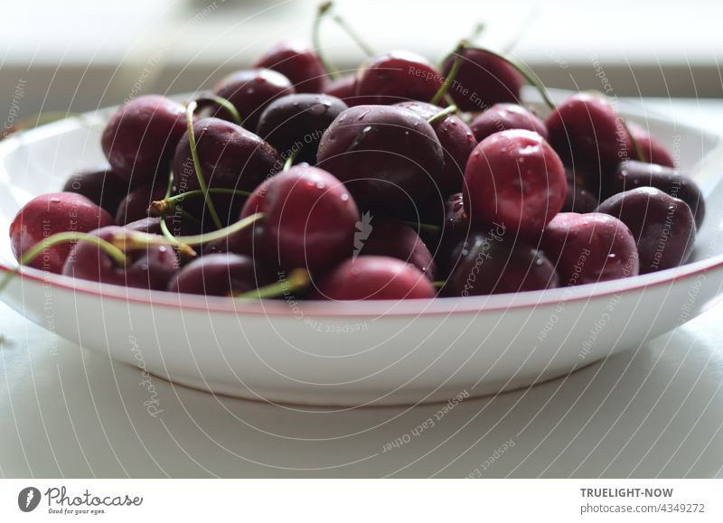 A white plate with a red rim full of red and dark sweet cherries in the heat of this summer day just fresh out of the fridge onto the equally white table. The heat shock forms a fine film of condensation on the fruit