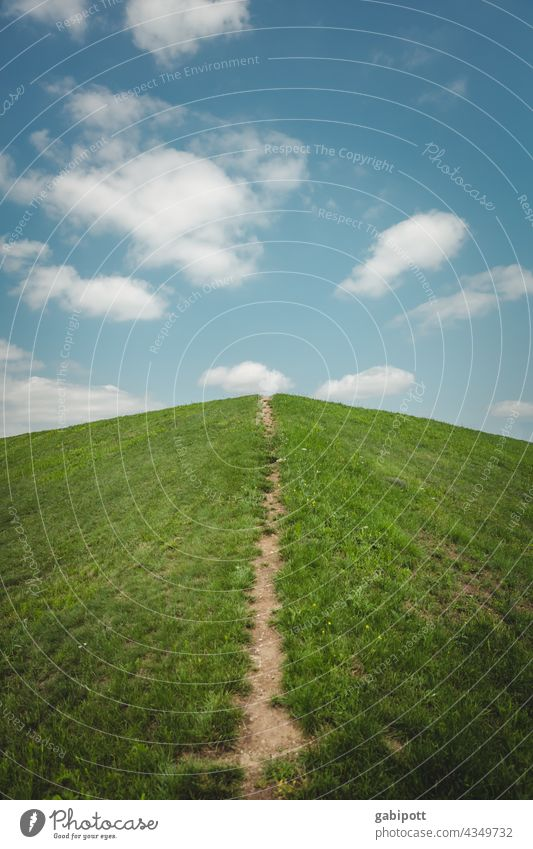 Way into the clouds Sky Clouds Lanes & trails Meadow Grass Deserted Direction Upward Forwards Trend-setting Target Career Orientation Success Future Optimism