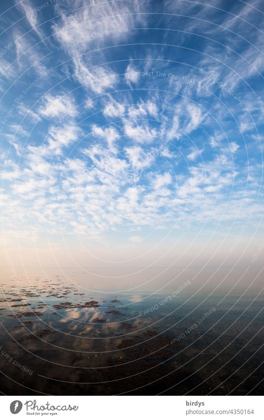 The Baltic Sea, water, sky with dynamic cloud scenery and a losing horizon Nature Climate Water Sky Clouds Ocean Horizon smooth water surface Infinity Elements