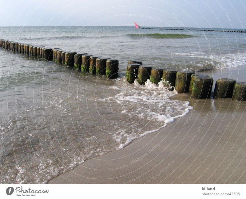 Baltic Beach Ocean Waves White crest Summer Baltic Sea Water Sand Break water Sun