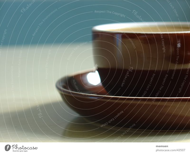 Sun Summer Wall (building) Table Beverage Kitchen Cup Cozy Coffee Espresso