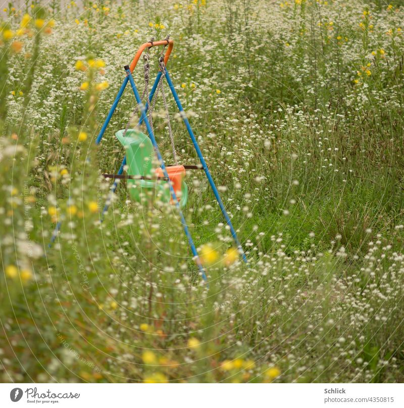 Colourful plastic swing for toddlers among many wild flowers Swing Meadow blossom Infancy Green Summer Nature Blossoming Flower meadow Meadow flower Summery