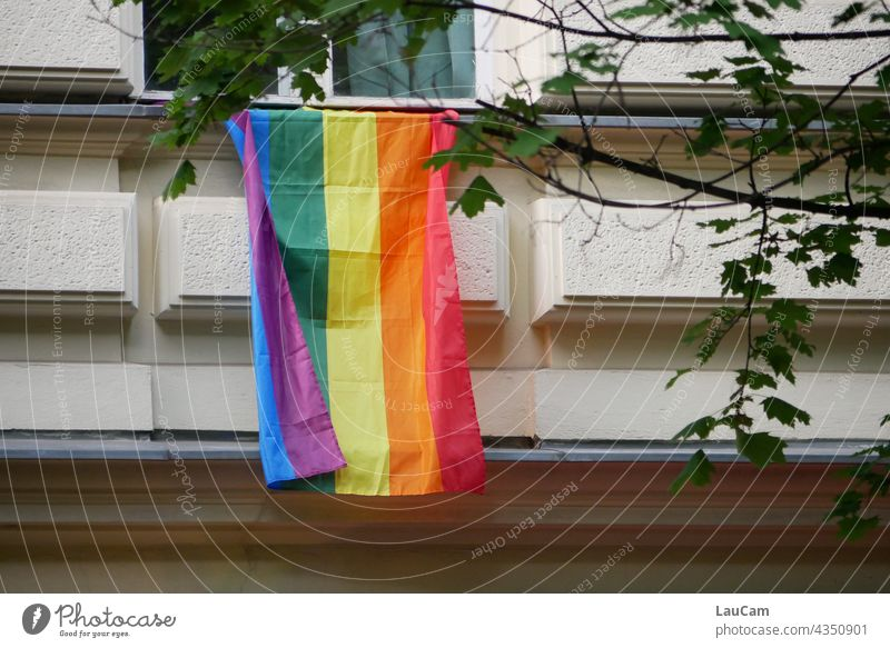 Long live diversity! Freedom open-mindedness variegated colourful Multicoloured variety LGBTQ Love Tolerant Equality fellowship Homosexual Pride Flag Lifestyle