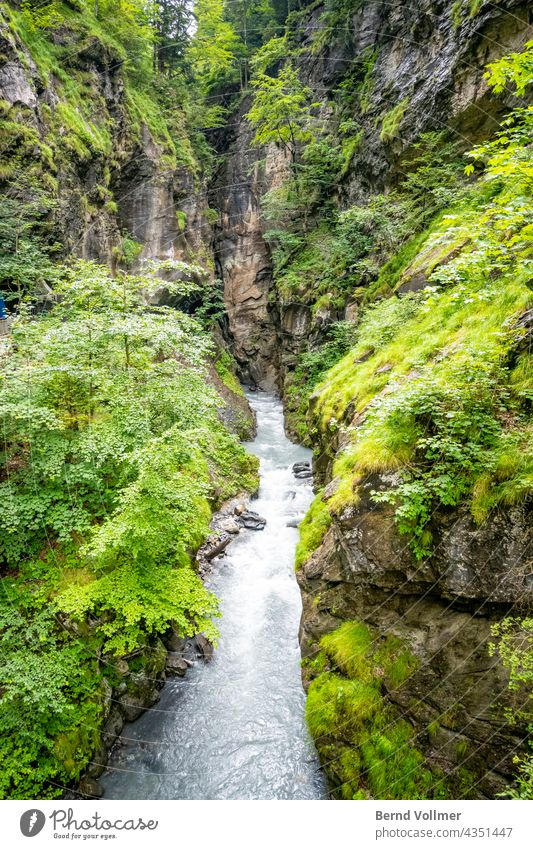 Alps gorge water Canyon Water Torrent Landscape Brook Deserted Mountain Waterfall Environment River Day Colour photo Rock Exterior shot Nature