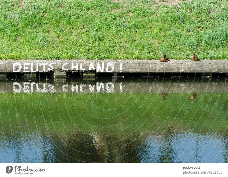 Reflection in Germany! with ducks Capital letter Street art Word Bank reinforcement Treptow Neukölln Berlin Surface of water Grass Duck Sunlight authored