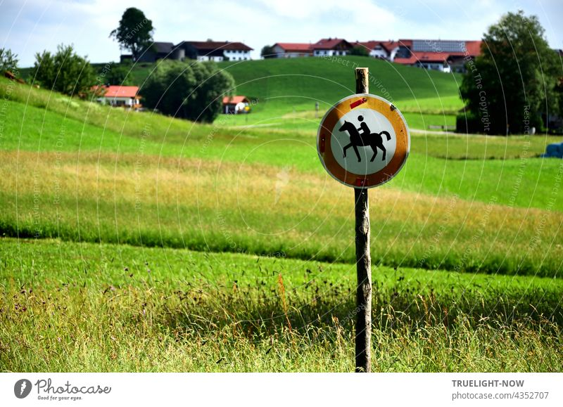 In the middle of my native Upper Bavaria, a no horse and rider sign on a slender wooden post indicates that the sensitive, often wet meadows and fields need protection and care. Stately farms on the hill in the background