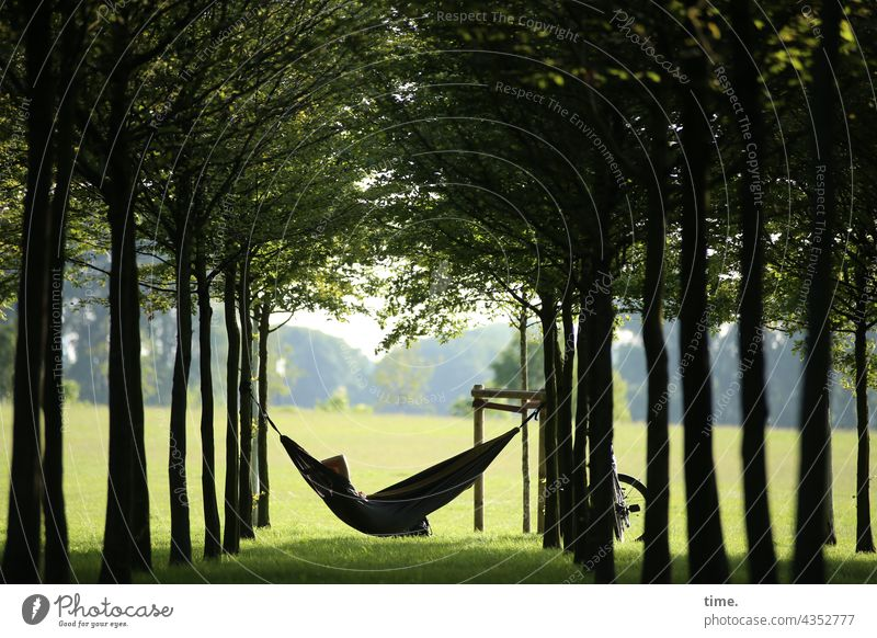 favourite place Hammock Lie trees Tense Park Bicycle relaxation Break Relaxation rest creatively To swing Nature recover vacation