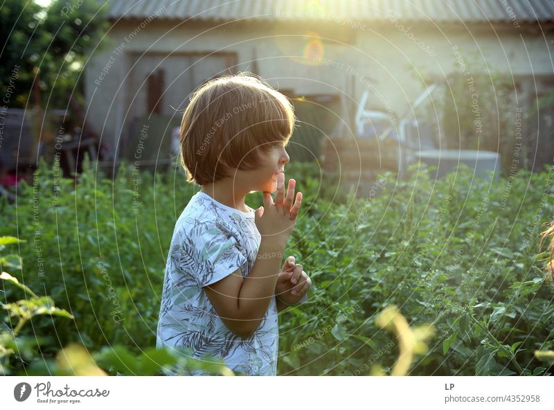 profile of a boy  walking in the garden and looking forward Education To enjoy Optimism Religion and faith Connection Positive Innocent Playful showing park