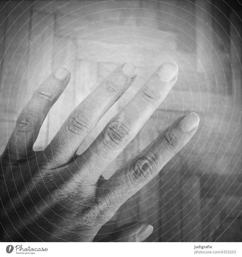 hand Hand Fingers Parquet floor Fingernail Skin Human being four Forefinger Middle finger Ring finger Thumb Little finger Black & white photo Joint