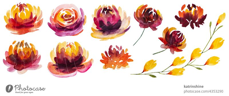 Autumn Watercolor collection with yellow, orange and red flowers Autumnal Botany Collection Isolated Nature Oak October Plant Season Seasonal September Set