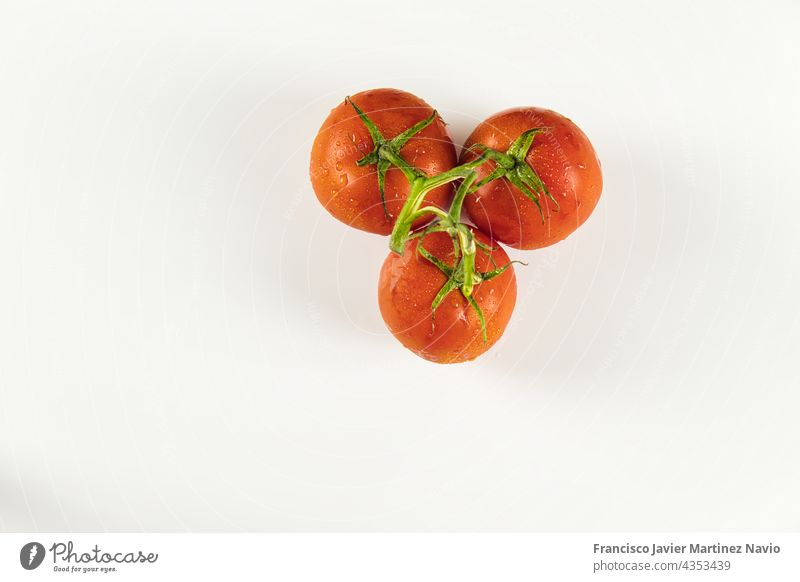 top view of cluster of tomatoes with drops on white background red copy space 3 bunch above ripe circle nourishment diet object clean nature freshness market