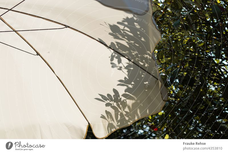 Part of white parasol with shadow of leaves from tree behind it Sunshade White sunny summer atmosphere Shadow Garden in the shade Light Shadow play Contrast