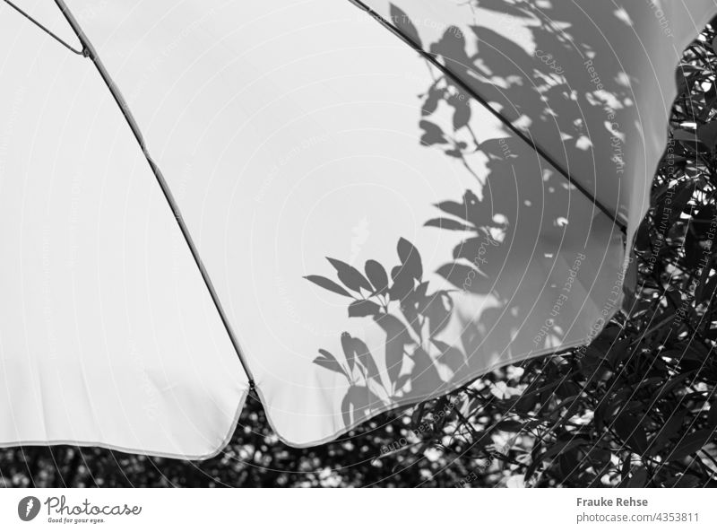 Part of white parasol with shadow of leaves from tree behind it Sunshade White sunny summer atmosphere Shadow Garden black-and-white in the shade Light