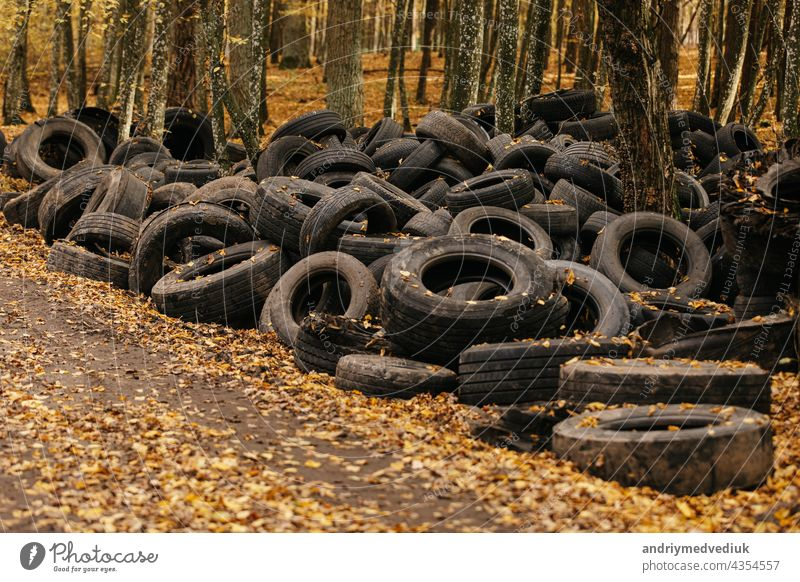 Old automobile tyre thrown out in a forest. noise is present. tire old abandoned wood rubber pollution garbage ecology transportation landfill dumped black