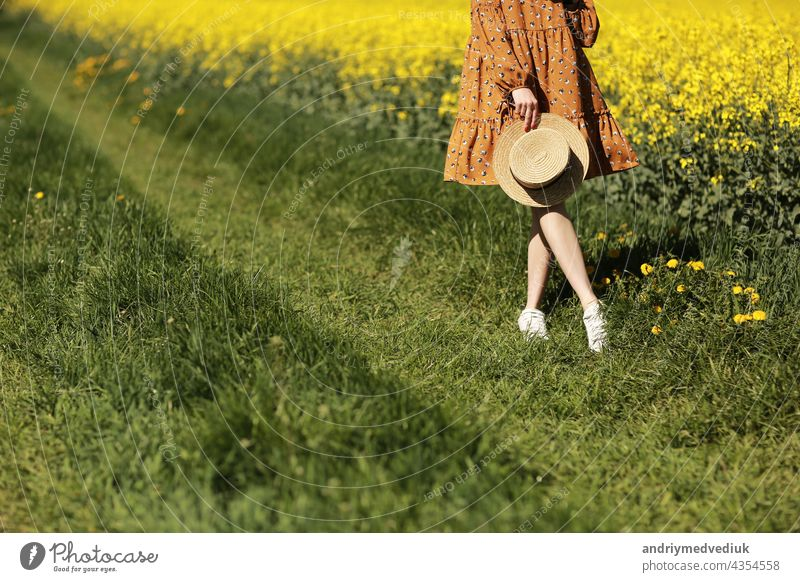 cropped photo of young woman walks in a field of yellow rapeseed. Girl brunette long hair fly in wind dressed in dress and straw hat. summer holiday concept
