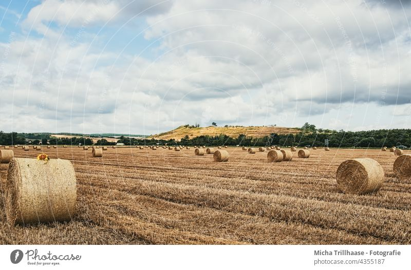Straw bales in the field Field Cornfield Bale of straw round bales Pressed harvested mares Agriculture Grain Grain field Harvest mountains Hill Sky Clouds Sun
