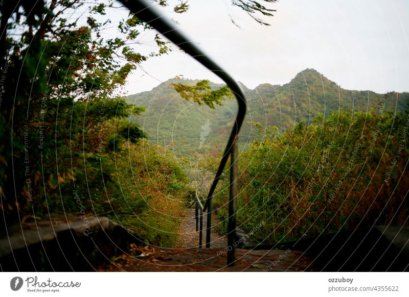 staircase on the mountain nature green outdoor path adventure way trail grass beautiful landscape park stone step up walk hiking walkway old railing day forest