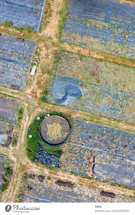 Plastic film in agriculture ll Structures and shapes Nature food production UAV view Deserted Bird's-eye view droning Drone pictures Landscape Field