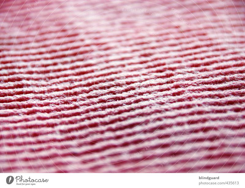 Heul Doch WISCH You Well Kitchen Pink Cleaning Floor cloth Cloth Structures and shapes Colour photo Close-up Detail Pattern Deserted Day Light Shadow Blur