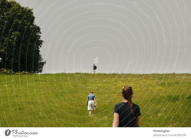 Three people run across a meadow 3 persons Hiking Meadow Hill Exterior shot Landscape flowers Nature Cross-country Colour photo Environment Day Mountain Green