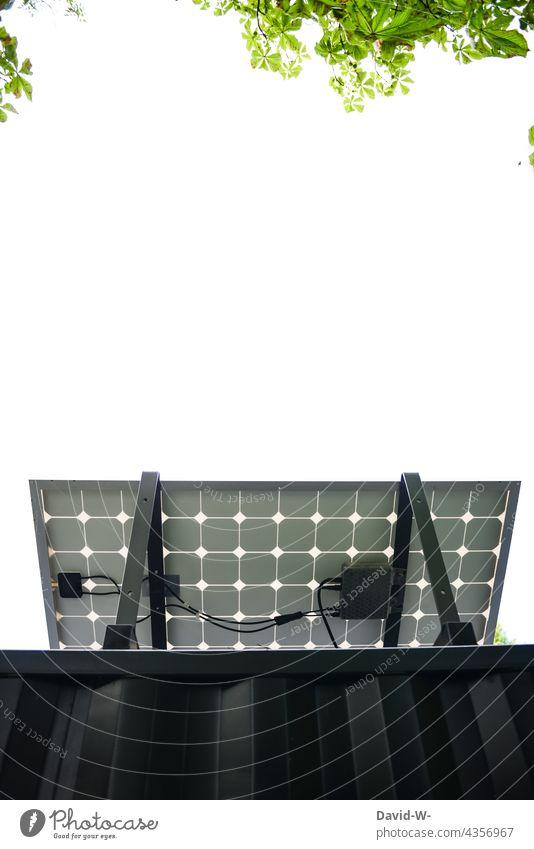 Solar - photovoltaic - plant for renewable energies Solar Energy solar solar panel Solar cell Renewable energy Green policy Solar Power Energy industry