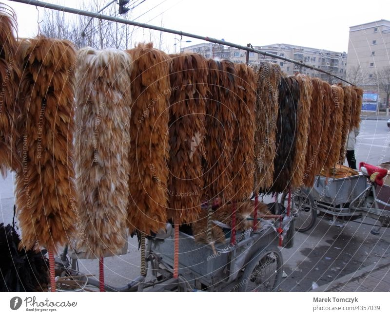 Street hawker in China having lots of feathers on display. street scene Town Asia everyday life mobile trader Exterior shot makeshift