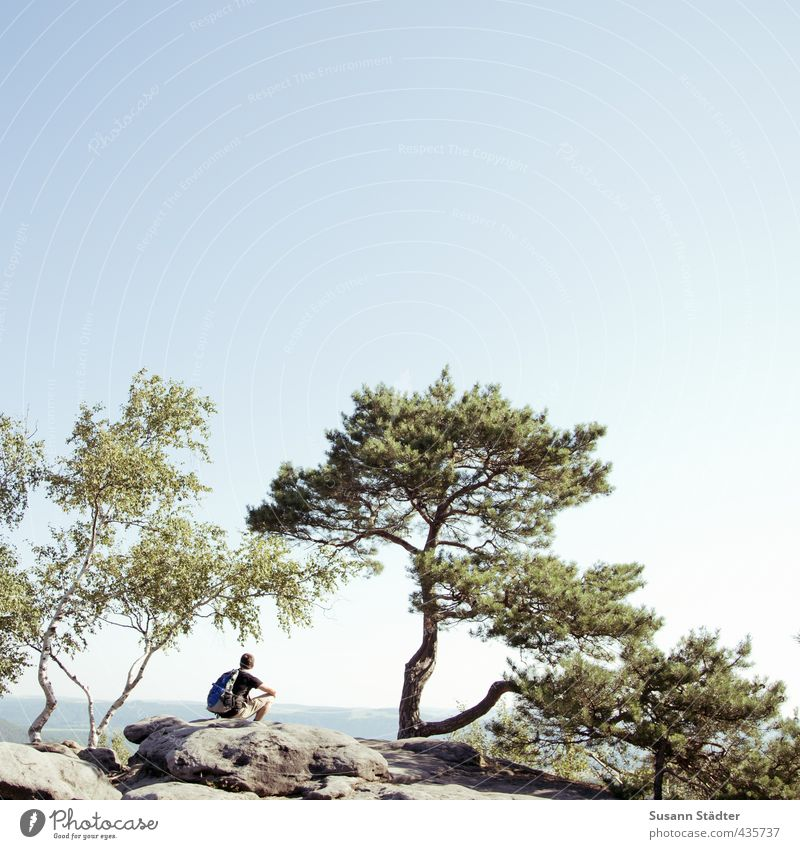 Human being Nature Youth (Young adults) Man Vacation & Travel Summer Tree Far-off places Adults 18 - 30 years Mountain Freedom Rock Leisure and hobbies Sit Hiking