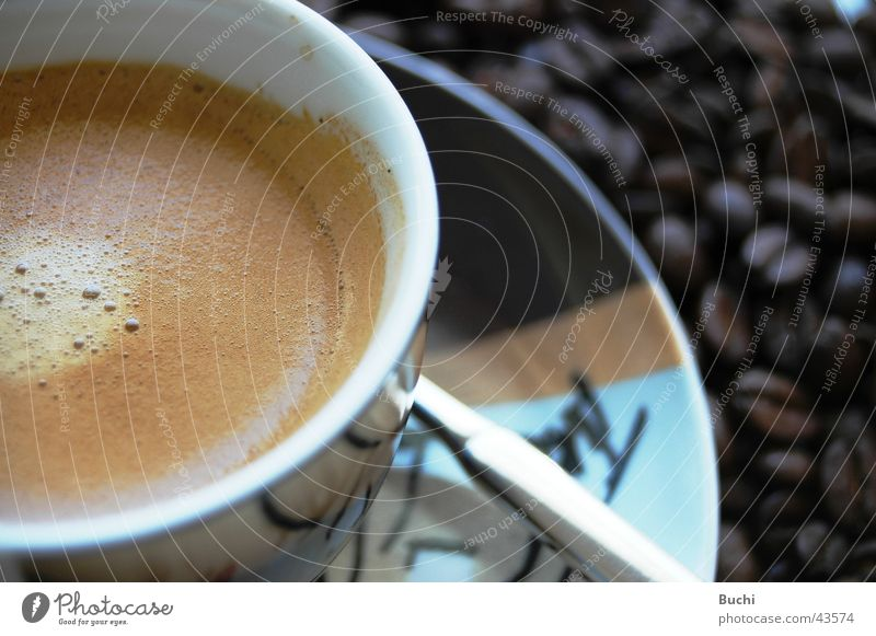 espresso Food Nutrition To have a coffee Beverage Hot drink Coffee Espresso Cup Delicious Beans Colour photo Close-up Day Detail Bird's-eye view Reflection
