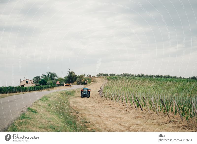 A tractor next to a vineyard in the Tuscan countryside Tuscany Vineyard Wine growing Tractor Landscape Italy cloudy Rural Winery Country road Green Sky grey sky