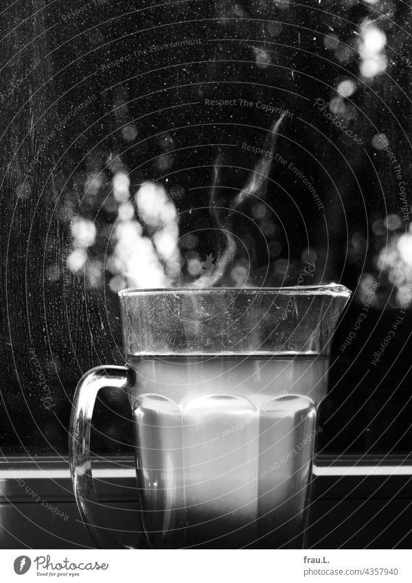 Caraway fennel orange tea Water jug Tea warm Window salubriously Glass pitcher Beverage Hot Tree