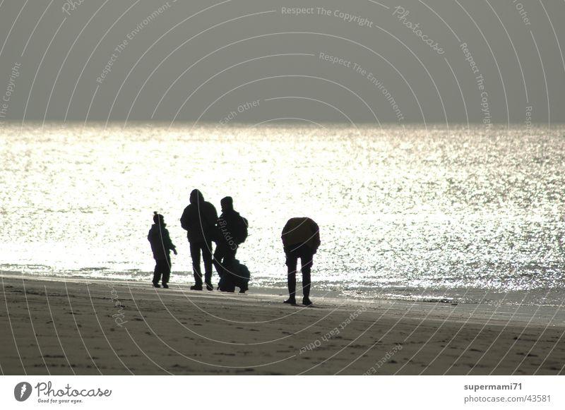 Sun Ocean Beach Playing Group Sand Wind