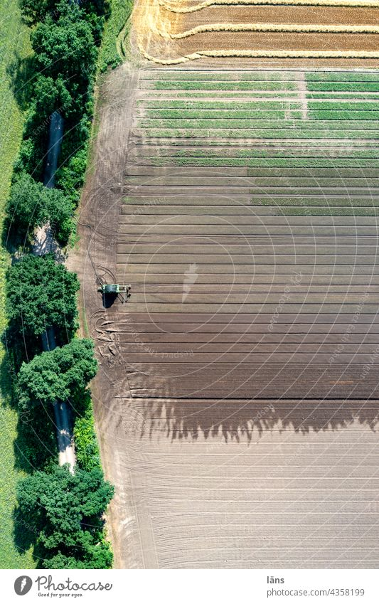 Agricultural area Irrigation Bird's-eye view Deserted Arable land Water Summer Wet lines Exterior shot UAV view Colour photo Striped Agriculture droning