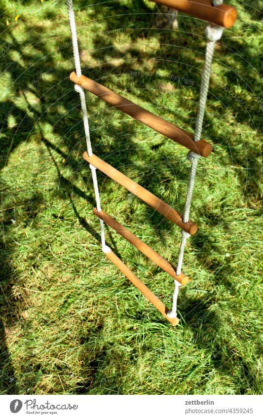 Rope ladder mown Hay mares sprout Climbing Ladder school holidays Meadow Depth of field Copy Space Garden plot Holiday season tranquillity Plant