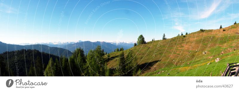 Tree Forest Mountain Large Vantage point Hut Panorama (Format) Alpine pasture Plant Peak cross