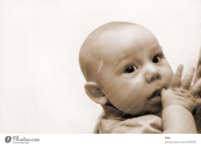 What are you looking at? Child Toddler Baby Hand Face Eyes Head Looking Sepia