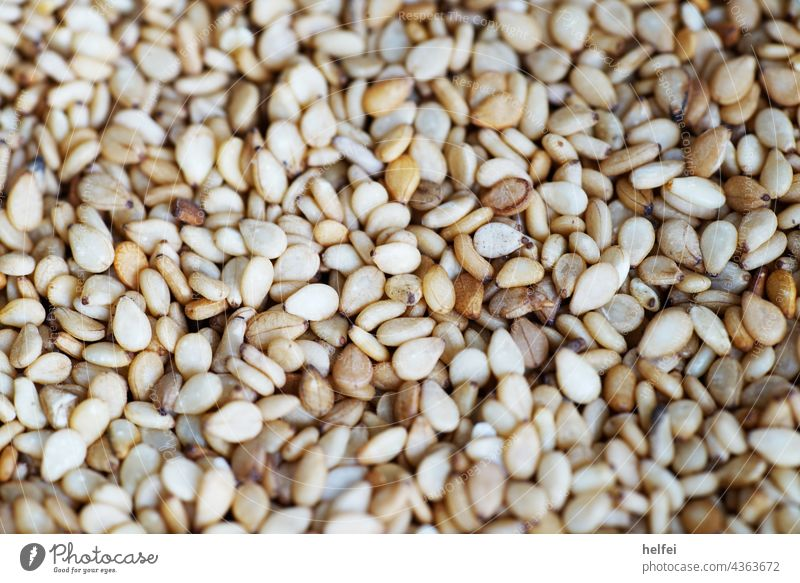 Sesame seeds photographed in studio with macro setting as a close-up Poppy Organic Minimalistic Isolated Self-made golden Fresh Food Cooking aligned Multiple