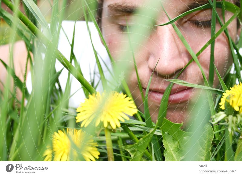 Smell this... Man Flower Grass Green Yellow Meadow Closed Face Eyes Lawn Hair and hairstyles Lie Nature Laughter