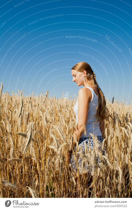 summer field Human being Feminine Young woman Youth (Young adults) Woman Adults 1 18 - 30 years Nature Landscape Sky Cloudless sky Summer Plant Grain