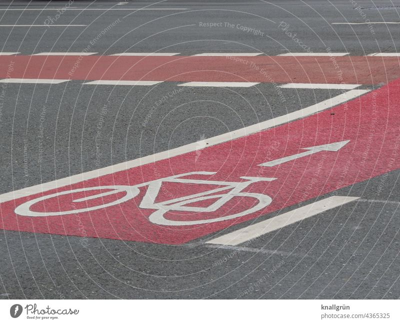 Road marking Bicycle lane Cycle path Lanes & trails Lane markings Symbols and metaphors Pictogram Arrow Street Asphalt Signs and labeling Traffic infrastructure