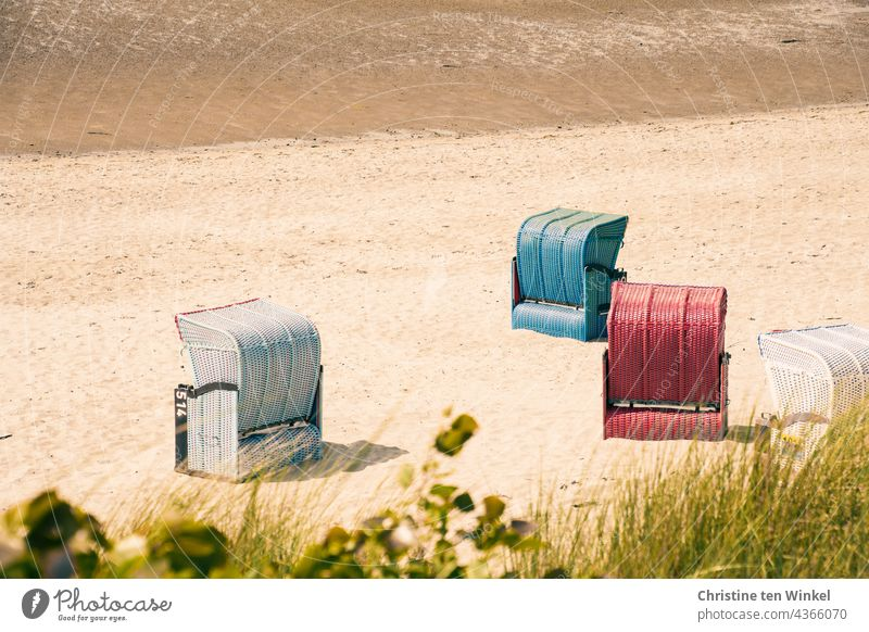 Beach chairs on the North Sea beach at low tide with dune grass in the foreground beach chairs tranquillity Deserted Sand Summer Low water Relaxation