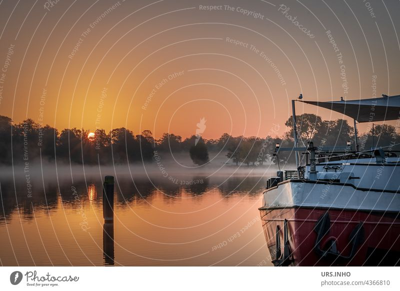 with the sunrise the fog over the water disappears River Sunrise Havel Brandenburg Orange ship Morning fog reflection Twilight silent Idyll idyllically fluid