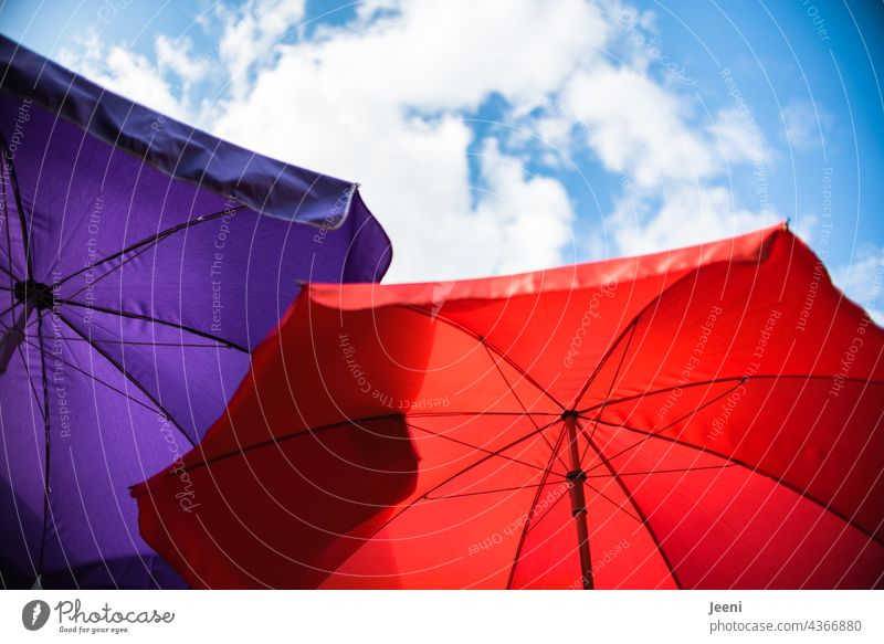Two parasols under a slightly cloudy sky Sunshade two Red purple Violet Sky Blue Blue sky Clouds White upstairs look up Upward Summer Sunlight sun protection
