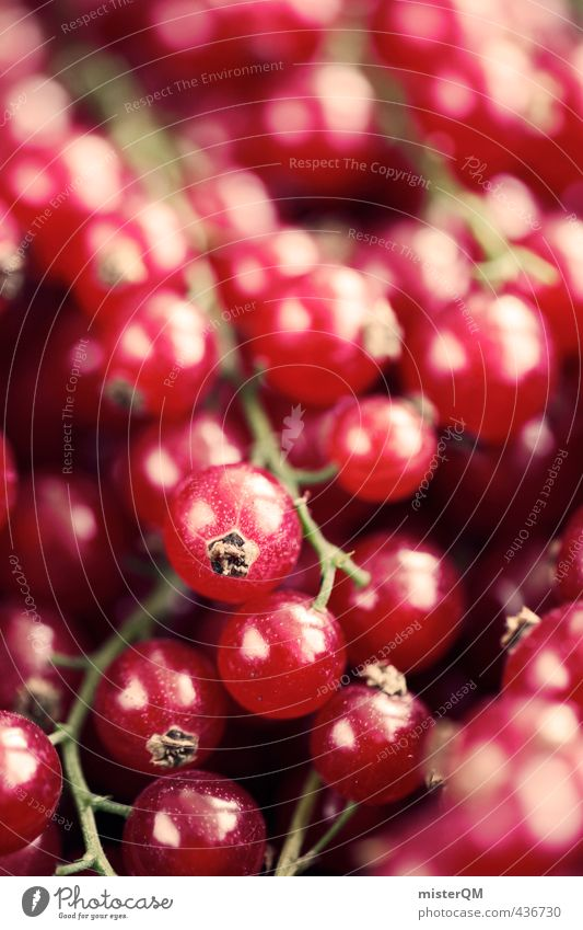 Currant red. Food Esthetic Contentment Redcurrant Berries Many Harvest Fruit Healthy Healthy Eating Vitamin-rich Vegetarian diet Colour photo Subdued colour
