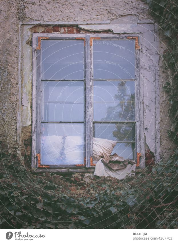 old window with dirty cushion dwell Old House (Residential Structure) Cushion frowzy Gloomy Transience Facade Window Building Wall (barrier)