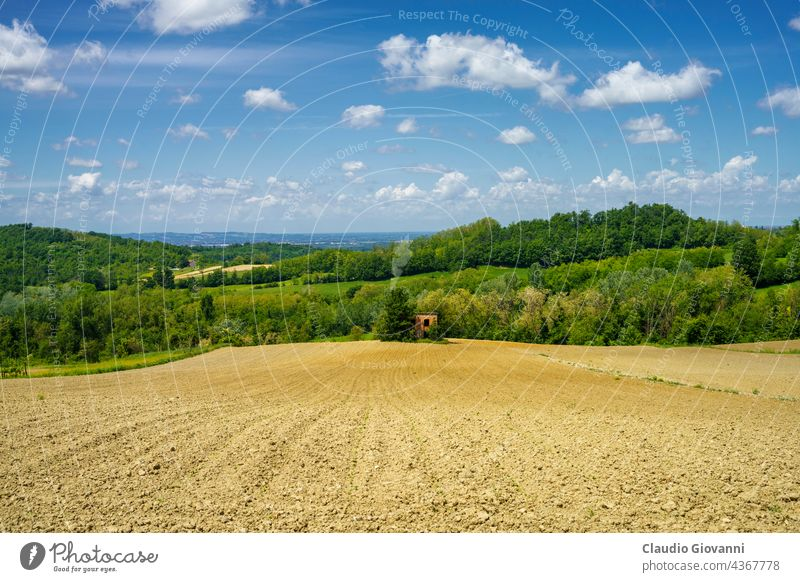 Landscape on the Tortona hills at springtime. Alessandria Colli Tortonesi Europe Italy Piedmont color day field green house landscape nature outdoor photography