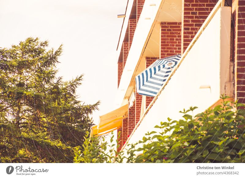 side view of a low 1960s apartment block with balconies, two yellow awnings and a striped parasol. Shrubs are in the foreground and conifers to the side....
